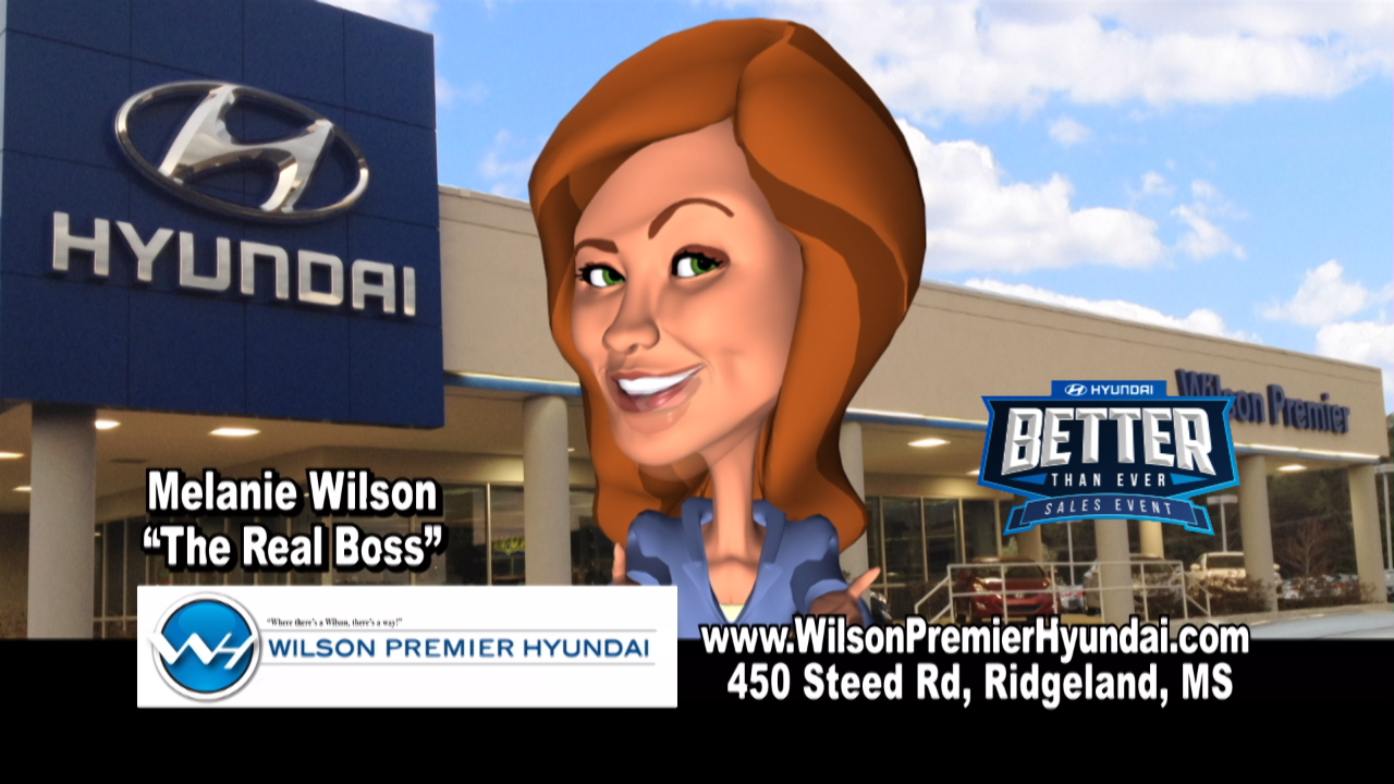 "Wilson Hyundai - ""Flipped Out"""